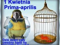 prima_aprilis_12